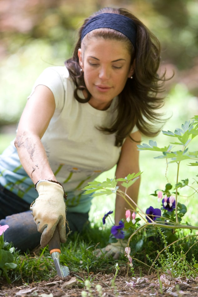 Culture des jardins