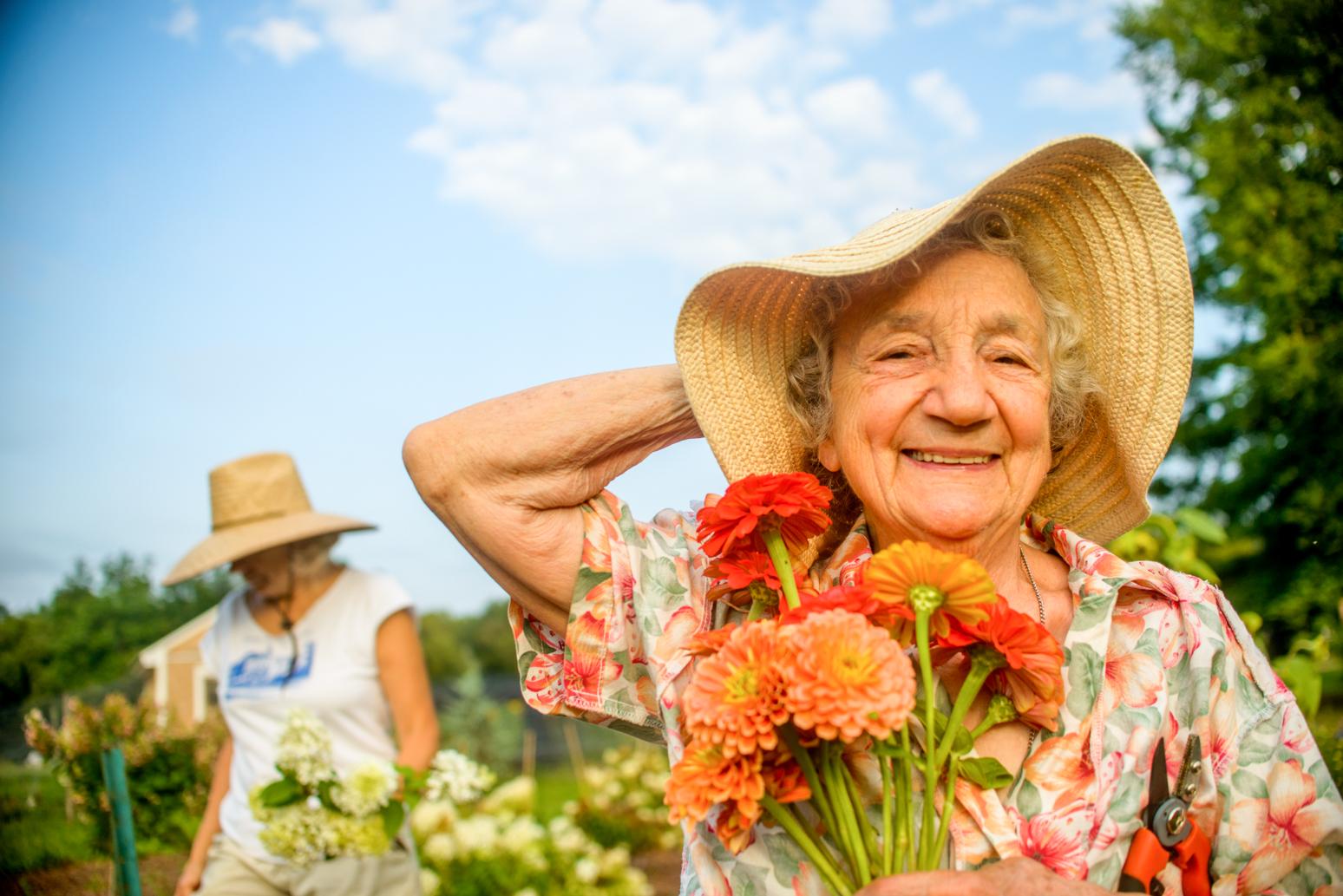 Jardinage d'été